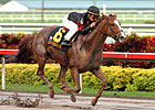 Sugar Swirl Sweeps to First Lady H.