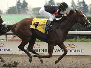 Sugar Swirl Scores in Ballerina Tune-Up