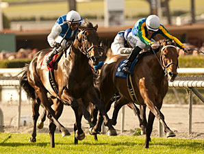 Suggestive Boy wins the 2013 Frank E. Kilroe Mile.