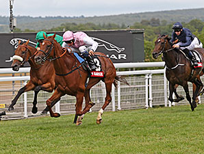 Gosden Wins Nassau for Third Straight Year