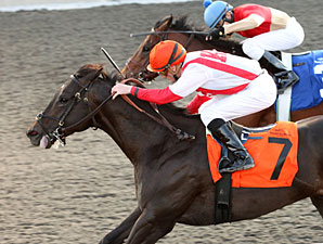 Sum of the Parts wins the 2012 Tom Ridge Stakes.