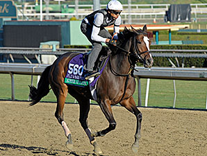 Summer Applause - 2013 Breeders' Cup, October 30 2013.