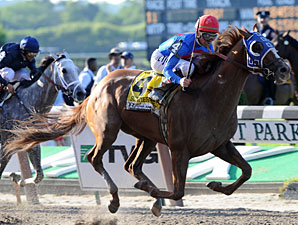 Haskin's Belmont Wrapup: Avian Adventures