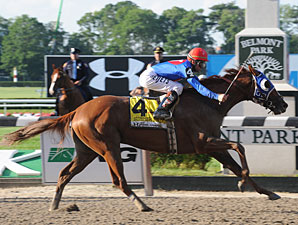 Summer Bird on the Mend at Oaklawn
