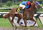 Horses Prepare for Belmont&#39;s Super Saturday