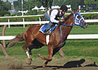 Weather Could Be a Big Factor in Travers