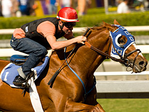 Classic Offers Tough Handicapping Challenge