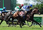 Summer Front Facing Full Field in Miami Mile