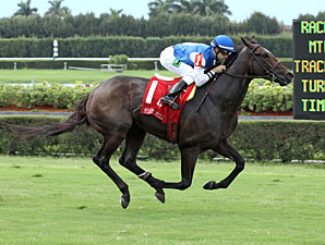 Summer Front wins the  2013 Miami Mile Handicap.