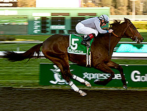 Summer Hit wins the 2013 Berkeley Handicap.