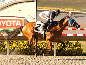 Sunday Rules wins the 2013 Generous Portion Stakes.