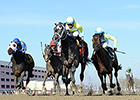 Sunny Ridge Prevails in Withers Stakes