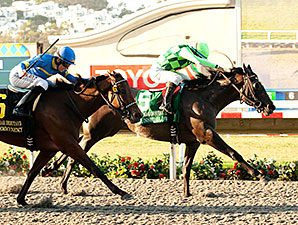 Sunset Glow wins the 2014 Del Mar Debutante.
