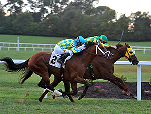 Suntracer wins the 2014 Kentucky Turf Cup.
