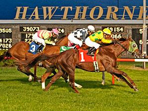 Suntracer wins the 2012 Robert F. Carey Memorial.