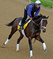 Super Saver Jogs; First Dude to Preakness