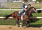 Super Saver, Others Breeze at Churchill Downs