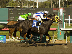 Surf Cat overtakes Desert Code to win the Mervyn LeRoy Handicap for the second time in the past three years.