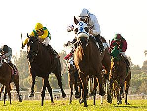 Susans Express wins the 2014 California Cup Oaks.