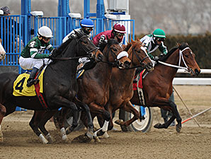 Sweet Reason - Allowance win, March 7, 2014.