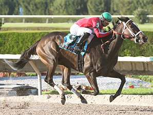 Sweet Repent wins the 2009 Elmer Heubeck Distaff.