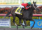 Sweet Repent Takes Five in Millions Distaff