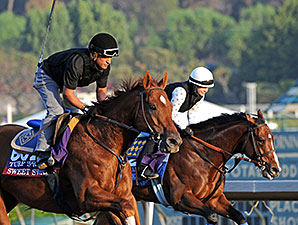 Sweet Swap and One Lucky Dane - Breeders' Cup 2014