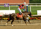 Swift Temper Handles Pace, Wins Delaware &#39;Cap