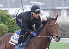Sadler Seeks La Brea Repeat With Switch