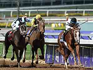 Take Charge Brandi wins the 2014 14 Hands Winery Breeders' Cup Juvenile Fillies.