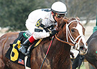 Champ Take Charge Brandi Breezes at Oaklawn