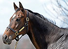 Slideshow: Take Charge Lady