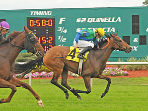 Taletobetold wins the 2009 Lightning City Stakes.