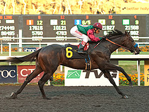 Tamarando wins the 2013 Real Quiet.