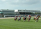 Tampa Bay to Provide Calder Horse Shuttle