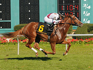 Tapicat wins the 2013 Florida Oaks.