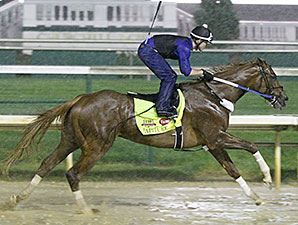 Tapiture works in the rain at Churchill Downs April 28.