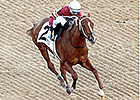 Tapiture Gets Back to Work at Oaklawn Park