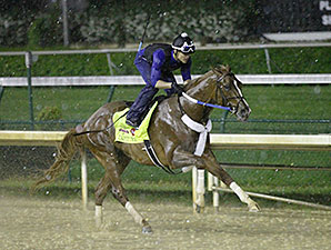 Tapiture - Churchill Downs, April 28, 2014
