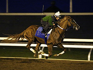 Route de la Breeders' Cup 2015 - Page 3 TapitureWorkoutKEE10112015KEE298