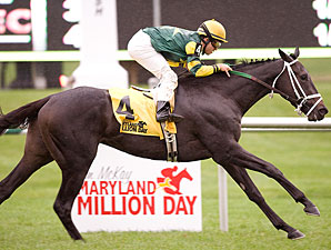 Target Sighted wins the 2009 Maryland Million Turf.