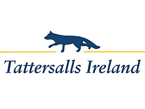 Tattersalls Ireland Restructures Nov. Sale