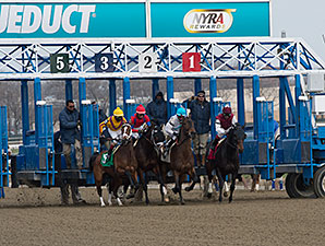 Teen Pauline wins the 2014 Affectionately Stakes.