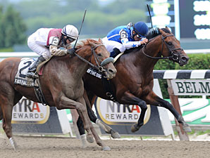 Jim Dandy Draws Wide-Open Field