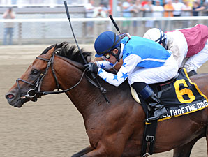 Teeth of the Dog Holds on in Dwyer Stakes