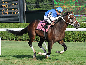 Telling wins the 2010 Sword Dancer.
