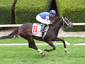 Tepin wins the 2015 First Lady.