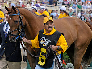 Terrain before the 2009 Preakness.