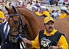 Multiple Stakes Winner Terrain Euthanized