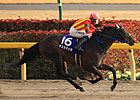 KY-Bred Testa Matta Wins Japan&#39;s February